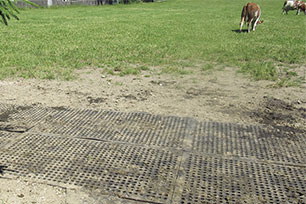 KRAIBURG LOMAX perforated rubber mat stabilizes natural soil for example on pasture