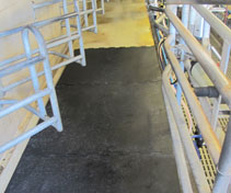 Parlour renovation - laying out the rubber mats