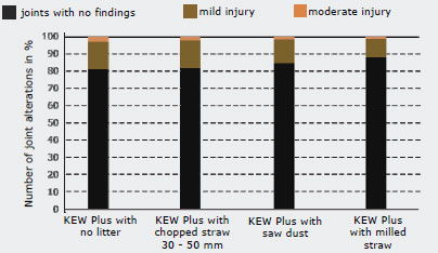 joint health with different litter on elevated cubicles: best option is milled straw