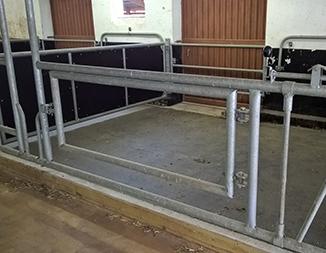 installed KRAIBURG VITA in calving pen