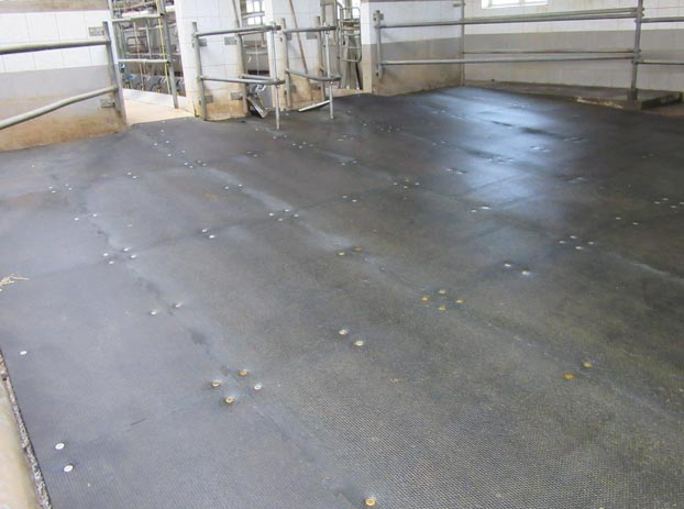 collecting yard after renovation with KRAIBURG KURA rubber flooring
