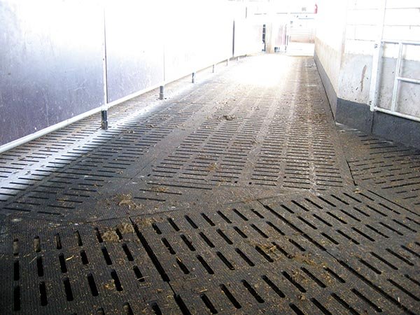 KRAIBURG KURA S tailor-made slatted floor cover made of rubber in the cow house
