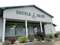 Double S Dairy, USA, field report 10 years KRAIBURG KURA walkway flooring made of rubber in the dairy cow cubicle house